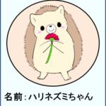 キャラクター紹介(ハリネズミちゃん)