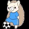 スポーツ振興くじ サッカー ハリネズミ